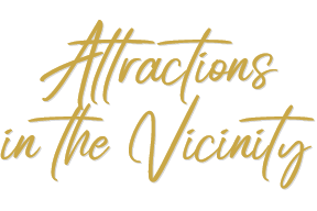 Attractions in the Vicinity