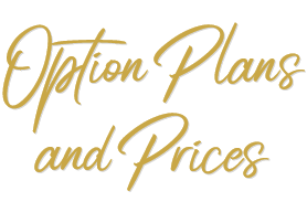 Option Plans and Prices